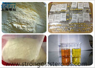 Top Quality 99% White Cutting Cycle Steroids Powder  Estradiol 50-28-2 For Anti-Cancer