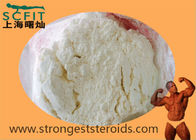 White Cutting Cycle Steroids Testosterone Isocaproate 15262-86-9 For Beginner Bodybuilder