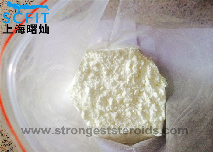 Male Hormone Fitness Anabolic Steroids Powder Nandrolone Undecanoate 862-89-5
