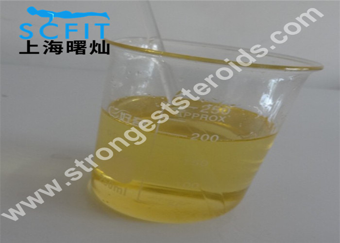Semi - Finished Steroid Oil Boldenone Undecylenate Injection / Equipoise 200/300 Mg/Ml